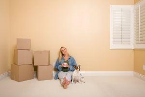 Mudança de casa: como adaptar seu bichinho de estimação ao novo lar